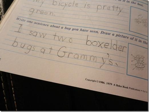 homeschooling 002